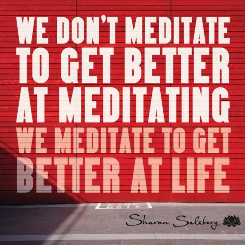 Bild mit der Aufschrift: We don´´t meditate to get better at meditating. We medidate to get better at life.