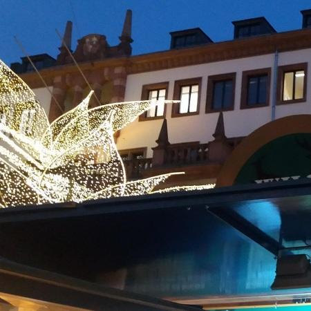 Blick auf´s Rathaus mit Weihnachtsbeleuchtung