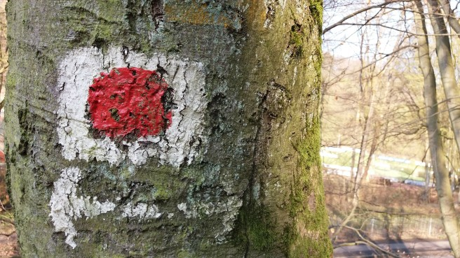 Gemalter Wegweiser. Ein roter Punkt auf weißem Grund an einem alten Baum